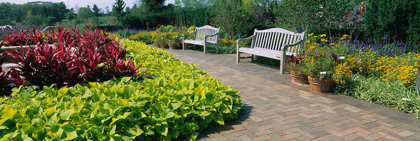 Chicago Botanic Garden Photograph - Plants In A Botanical Garden, Circle by Panoramic Images