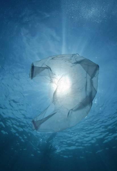 Plastic Bag In The Ocean Art Print
