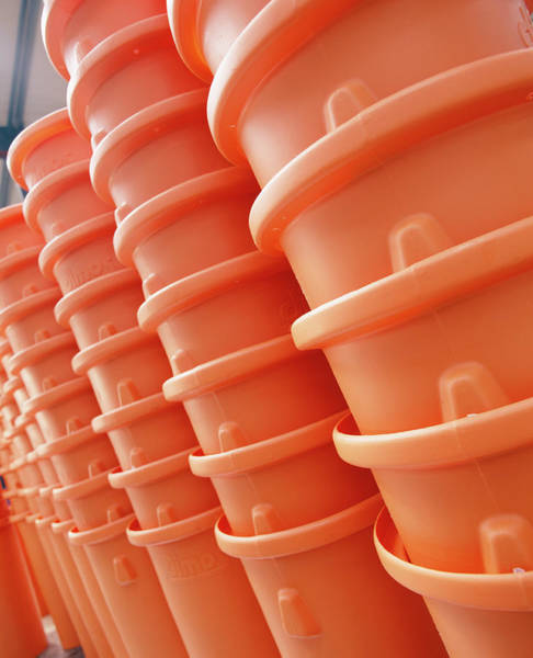 Wall Art - Photograph - Plastic Bins by Steve Allen/science Photo Library