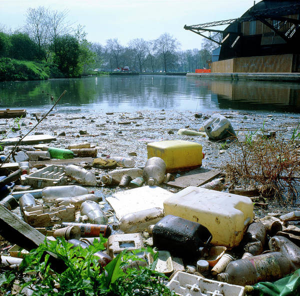 Litter Photograph - Plastic Litter by Robert Brook/science Photo Library