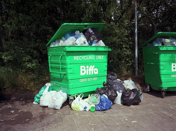 Rubbish Bin Photograph - Plastic Recycling by Robert Brook/science Photo Library