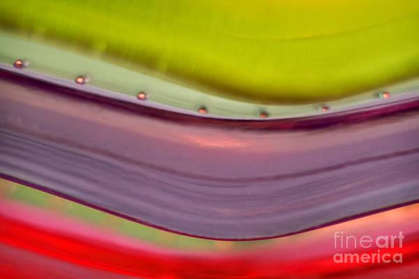 Photograph - Plastic Waves by Elena Nosyreva