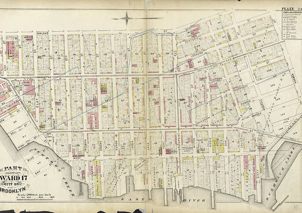 Ashes Drawing - Plate 23 Bounded By Oakland Street, Meserole Street by Litz Collection