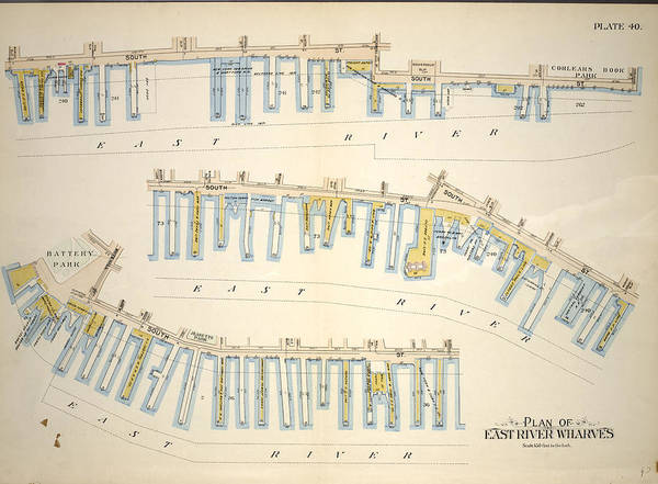 Wall Art - Drawing - Plate 40 Plan Of East River Wharves. Covers The Wharves by Litz Collection