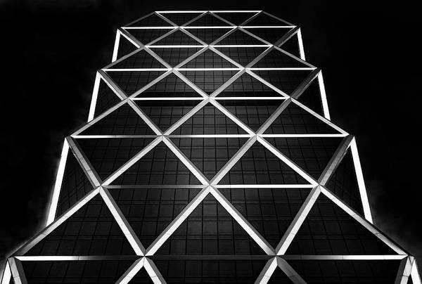 Grid Photograph - Platinum by Hans-wolfgang Hawerkamp