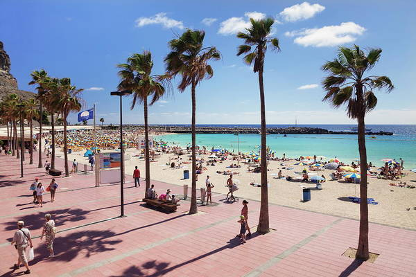 Canary Photograph - Playa De Los Amadores, Gran Canaria by Markus Lange / Robertharding
