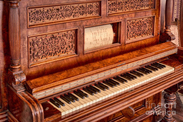 Player Piano Photograph - Piano Keys In The Key Of Life by Inge Johnsson