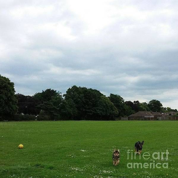 Sport Wall Art - Photograph - Playing Football by Abbie Shores