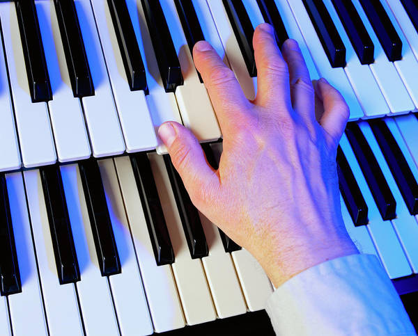 Chord Wall Art - Photograph - Playing The Electric Organ by Martin Bond/science Photo Library
