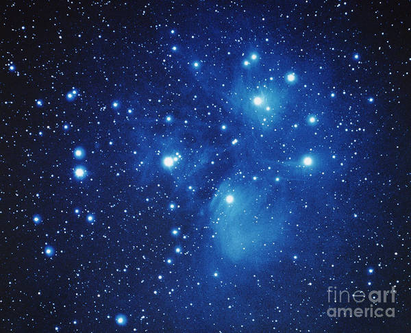 Photograph - Pleiades Star Cluster by Jason Ware