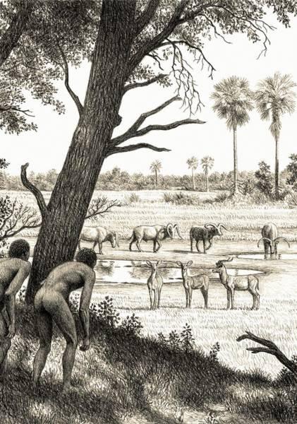 Wall Art - Photograph - Pleistocene Scene At West Turkana by Mauricio Anton/science Photo Library