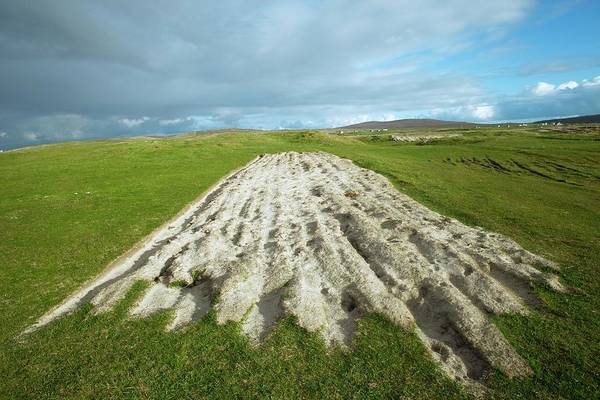 Crofting Photograph - Ploughed Farmland by David Woodfall Images/science Photo Library