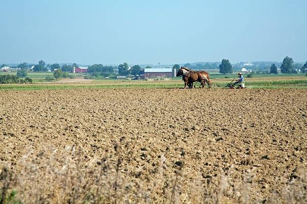 Amish Country Photograph - Ploughing On An Amish Farm by Jim West