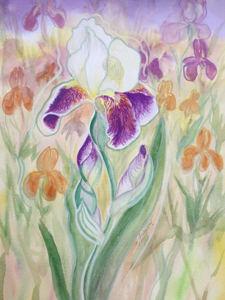 Painting - Plum Pudding Iris by Sherri Anderson