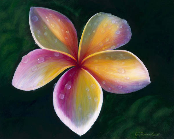 Painting - Plumeria by Jeannette Tramontano