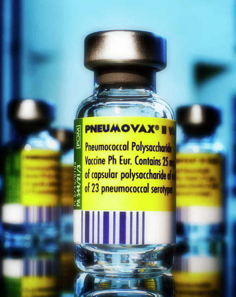 Prophylactic Photograph - Pneumovax Vaccine by Saturn Stills/science Photo Library