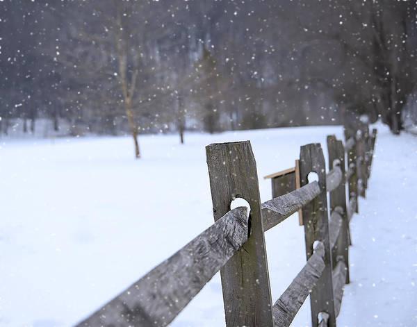 Wall Art - Photograph - Pocono Snow by Dave Sandt