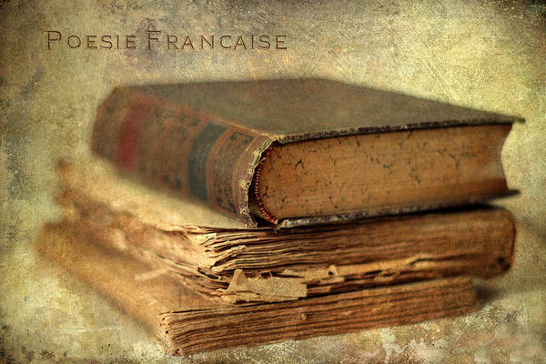 Photograph - Poesie Francaise by Jessica Jenney