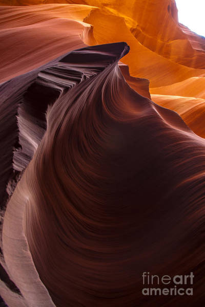 Photograph - Poetry In Motion by Jim McCain