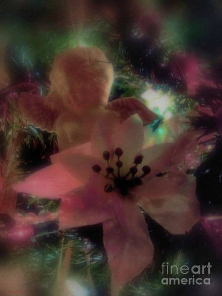 Yule Photograph - Poinsettia Angel by Roxy Riou