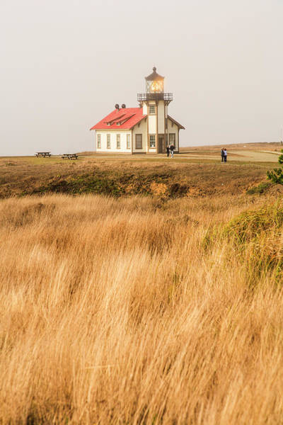 Cabrillo Photograph - Point Cabrillo Lighthouse And Marine by Stuart Westmorland