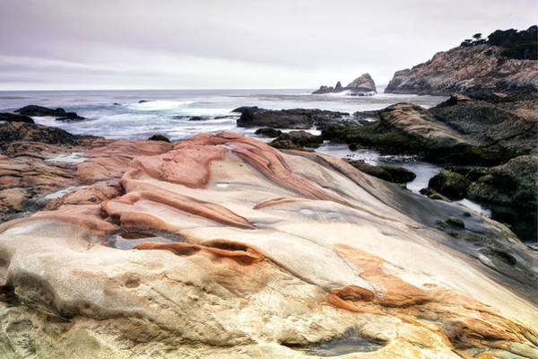 Wall Art - Photograph - Point Lobos State Park by Chris Frost