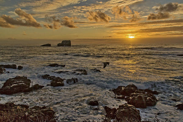 Photograph - Point Piedras Blancas Sunset Variation by Jim Moss
