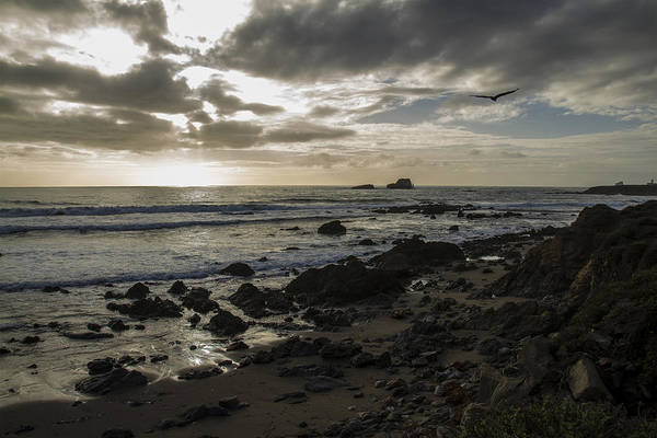 Photograph - Point Piedras Blancas Surf by Jim Moss