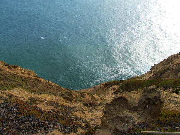 Photograph - Point Reyes I by Michelle Dallocchio