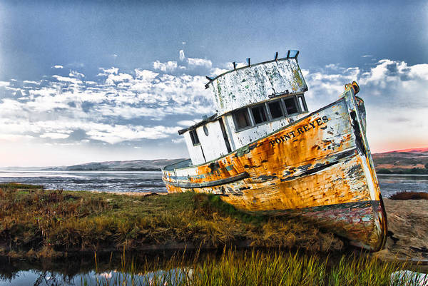 Photograph - Point Reyes by Robert Rus