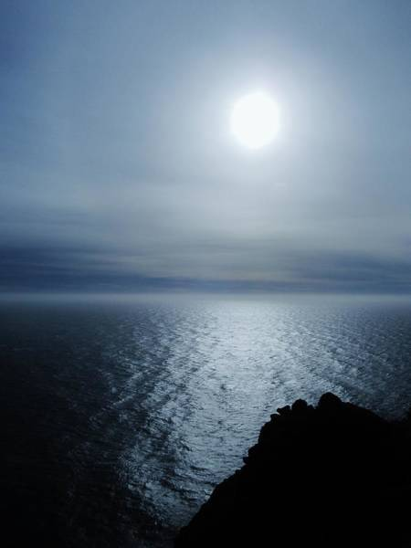 Photograph - Point Reyes V by Michelle Dallocchio