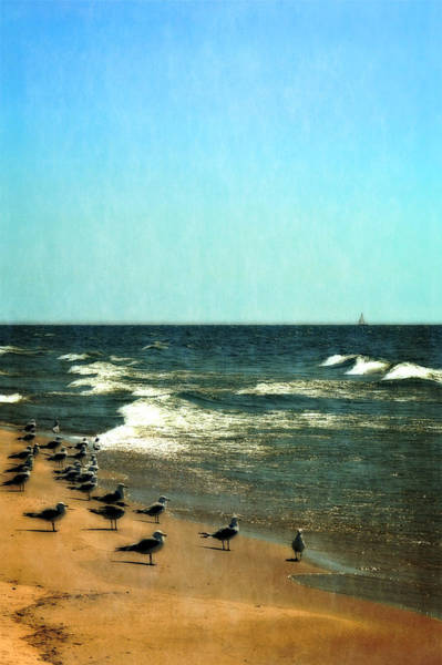 Holland State Park Photograph - Pointed Into The Wind by Michelle Calkins