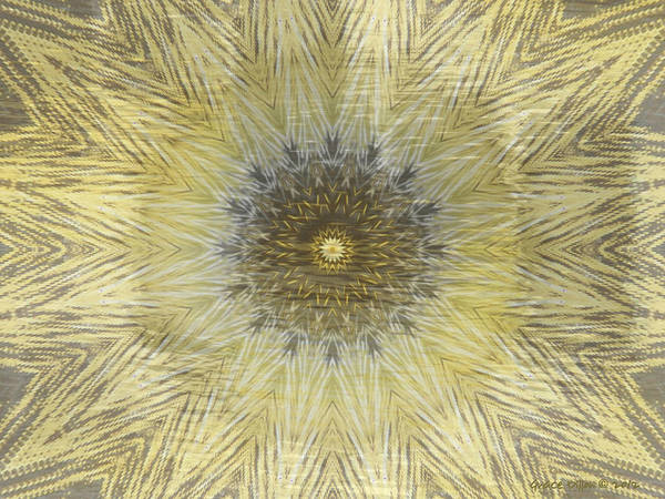 Digital Art - Points Of Yellow by Grace Dillon