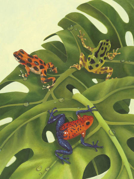 Amphibian Wall Art - Painting - Poison Pals by Laura Regan