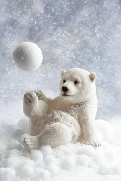 Christmas Photograph - Polar Bear Decoration by Amanda Elwell