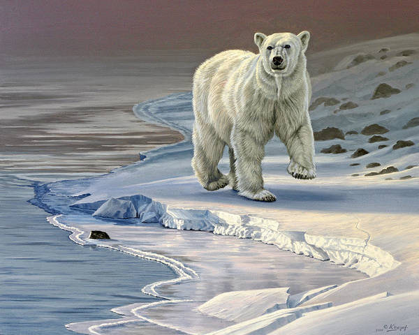 Wall Art - Painting - Polar Bear On Icy Shore    by Paul Krapf