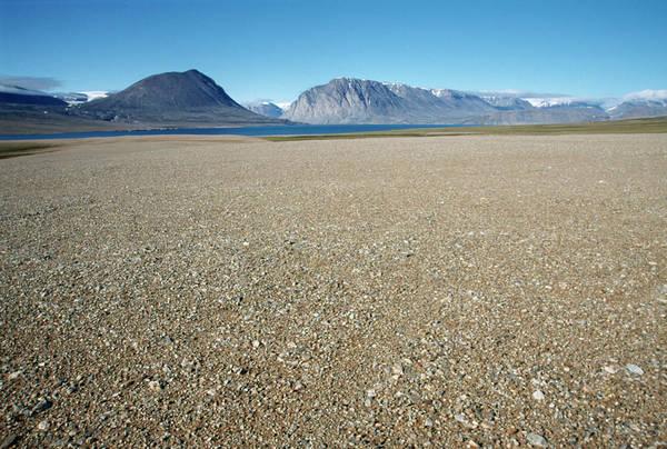 Wall Art - Photograph - Polar Desert by Simon Fraser/science Photo Library