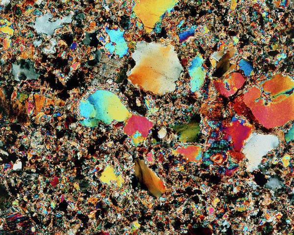 Wall Art - Photograph - Polarised Lm Of Granite In Thin Section by Alfred Pasieka/science Photo Library