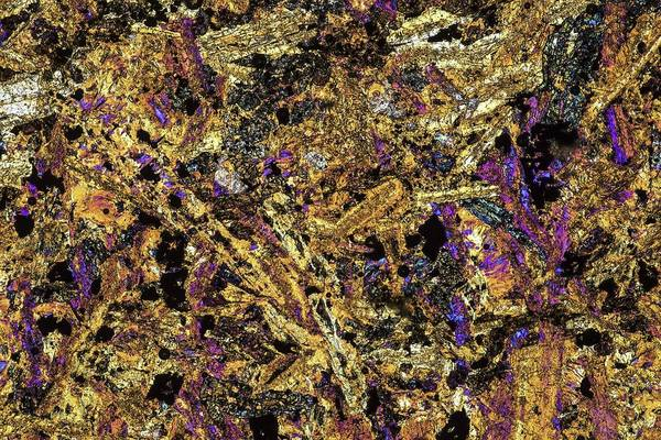 Geological Photograph - Polarised Lm Of Thin Section Of Gabbro by Alfred Pasieka