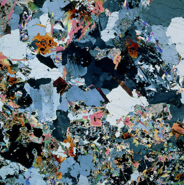 Wall Art - Photograph - Polarised Lm Of Thin Section Of Granite by Alfred Pasieka/science Photo Library
