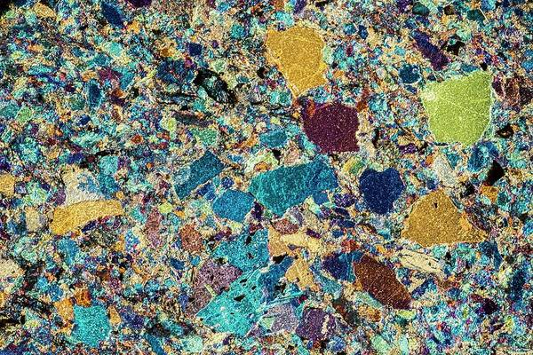Geomorphology Wall Art - Photograph - Polarised Lm Of Thin Section Of Greywacke by Alfred Pasieka/science Photo Library