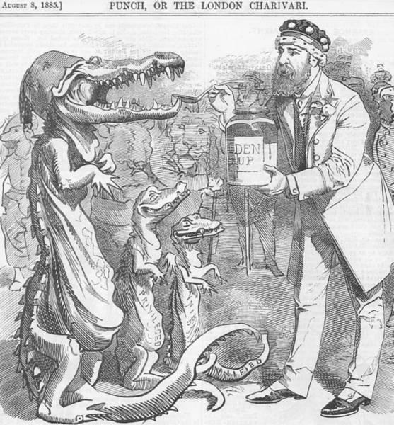 Political Crocodile Art Print