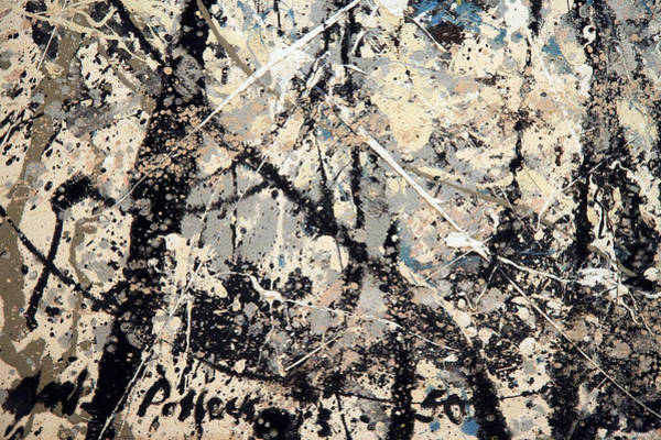 Lavender Mist Wall Art - Photograph - Pollock's Name On Lavendar Mist by Cora Wandel