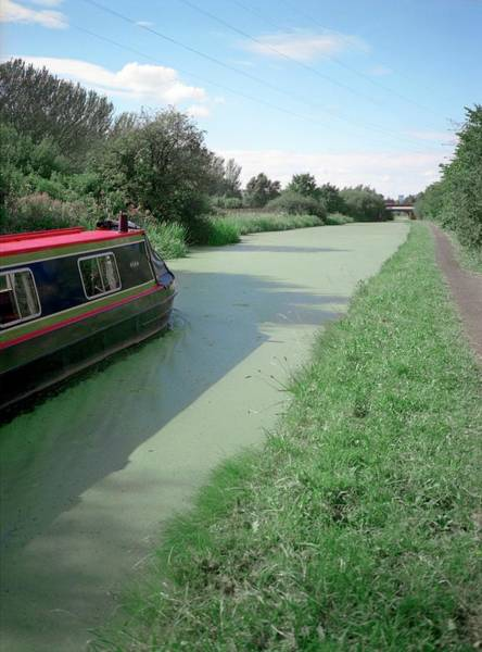 European Union Photograph - Polluted Canal by Robert Brook/science Photo Library