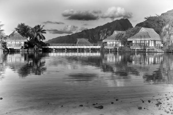 Photograph - Polynesia by Gigi Ebert