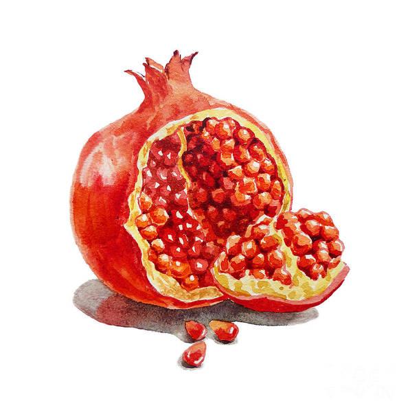 Pomegranate Painting - Pomegranate   by Irina Sztukowski