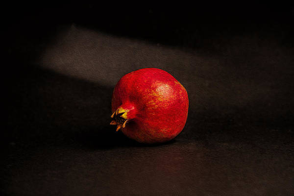 Photograph - Pomegranate by Peter Tellone
