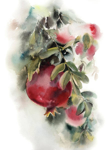 Pomegranates Painting - Pomegranate by Sophia Rodionov