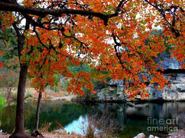 Wall Art - Photograph - Fall At Lost Maples State Natural Area by Michael Tidwell