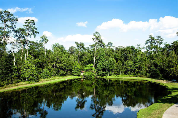 Hardwood Photograph - Pond In Texas Surrounded By Trees by Fstop123